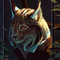 The Elusive Lynx by AlsaresLynx