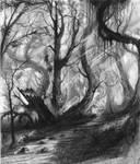 Daily sketch #14 by arashsketchy