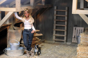 1:6 scale Horse Barn by Regent Minaitures by regentminiatures