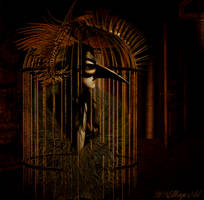 the cage by magicsart