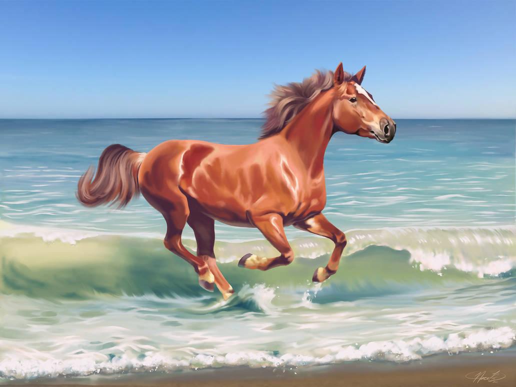 Dreams of the Beach by Kuvari