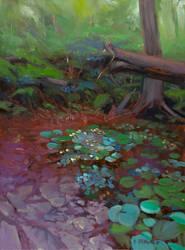 Leafy Forest Floor by DavidBrowne