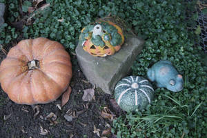 pumpkins and frogs by ingeline-art
