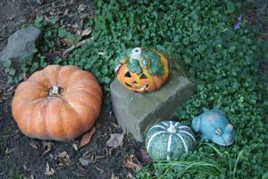 pumpkin decoration in my garden 2 by ingeline-art
