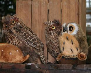 owls by ingeline-art