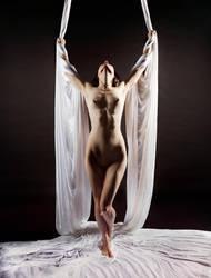 Wings of Silk and Bone by spilt-sugar