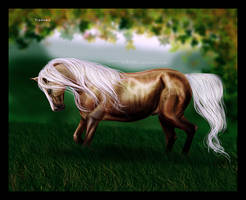 Tindome by Esveeka