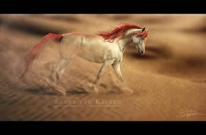 Habibah by Esveeka