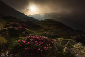 Heaven and earth @ Retezat by Pod-Photography