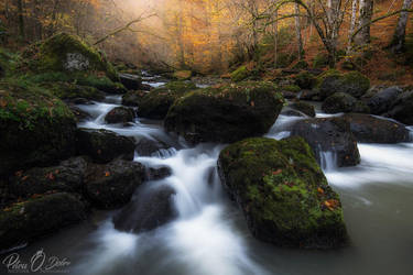 The water of life by Pod-Photography