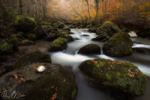 The water of life I by Pod-Photography