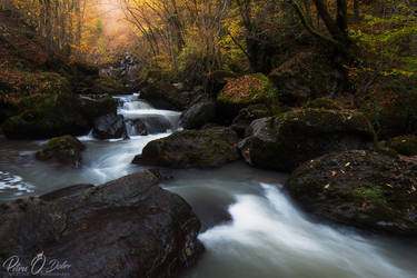 The water of life II by Pod-Photography