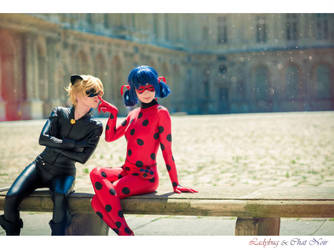 Miraculous Ladybug by Emi-zone