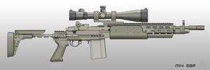 M14 EBR by pabumus