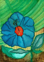 Errrr...It's A Flower by peggymintun
