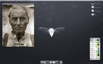 2006-08-26 desktop by Pe7er