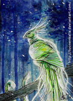 ACEO: Glowing youth by Tuonenkalla