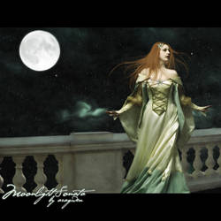 Moonlight Sonata by aragwen