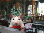 Barman rat by Momotte2
