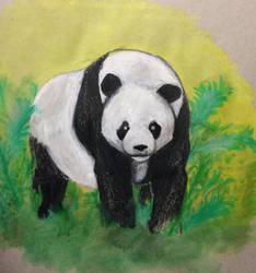 Panda  Panda by MarcoHauwert