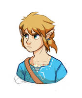 Link by CloudDoodle