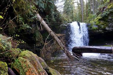 Stocking Creek 2 by MeFlyingFree
