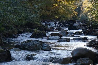 Koksilah River by MeFlyingFree