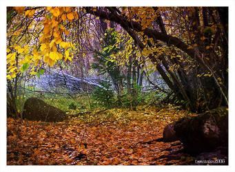 Autumn III by emmysdaddy