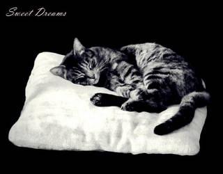 Sweet Dreams by CherishKay