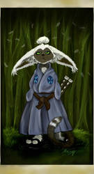 Last Airbender - Samurai Momo by Miki-
