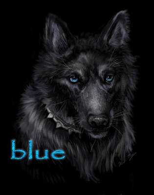 Wolf's Rain Blue... by Miki-