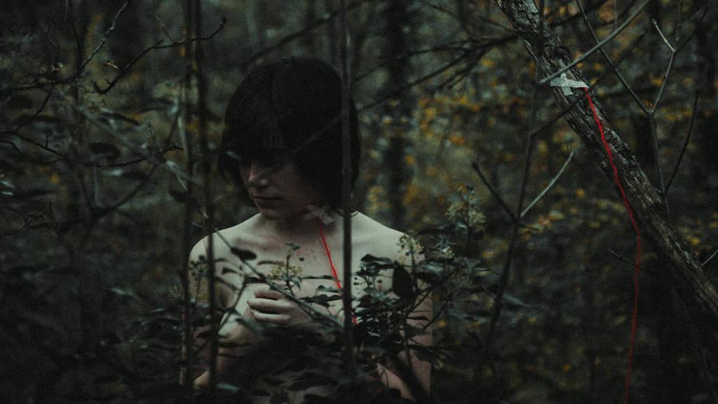 IMG 6347 (Kopiraj) by Dark-Indigo