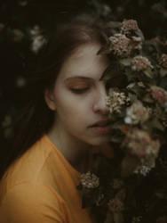 Warm... by Dark-Indigo