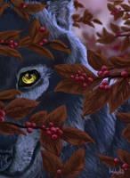 Destined to Wander by FrayedDawn