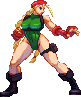 Cammy (Street Fighter V) by RieyTails