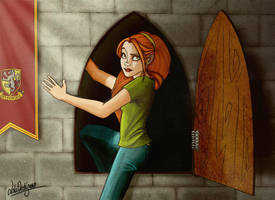 HP: Through the Portrait Hole by Loleia