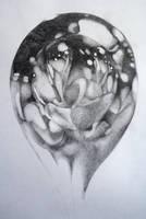 Glass Bubble by ellejayess