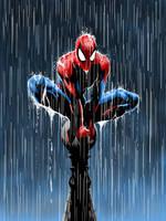 Spider Man by DailyCartoonDrawings