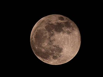 Full Worm Moon by taramara