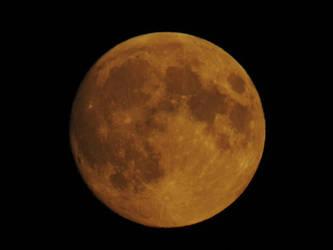 Red Moon by taramara