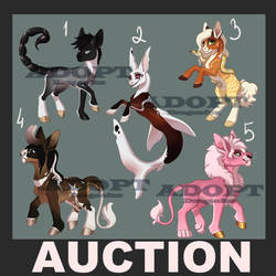 SALE Adopt AUCTION 5 Ponies OPEN!! by DragonFoxAdopts