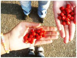 wild strawberry . by street-rebel