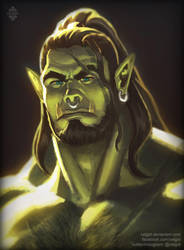 Orc Portrait by Xelgot