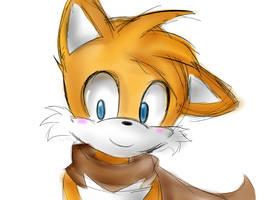 The fox by Shady-Dayz