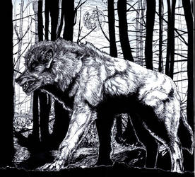 The Man-Wolf by PureDragon