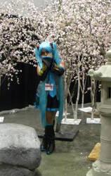Anime Expo 2013- 18 by Sonamyluver