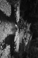 Sesta Godano River by schlachthof