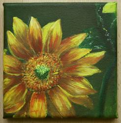 sunflower II by schlachthof