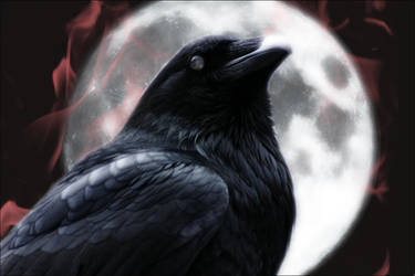 The Raven by fleurdemai