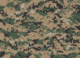 Camouflage - United States - MARPAT(Woodland) by BradVickers